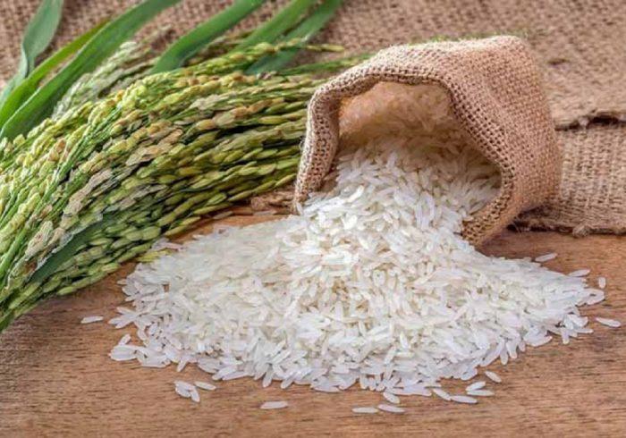 برنجهای دپو شده اجازه ترخیص ندارند