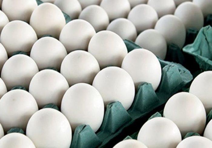 چرا نباید نگران خوردن تخم مرغ برای صبحانه باشید؟