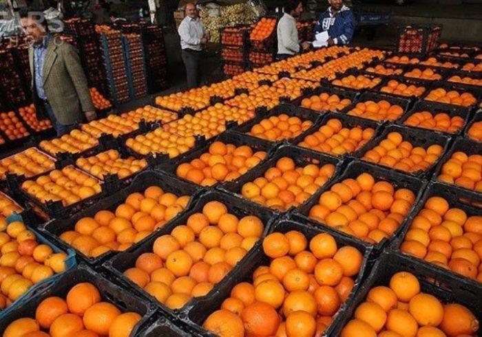 نرخ انواع مرکبات از شمال تا جنوب؛ بازار سیاه پرتقال و نارنگی به دست دلالان راه افتاد!