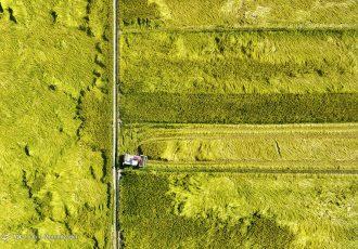 رفع موانع تولید یا مانع تراشی؟ / ایرادات طرح رفع موانع تولید کشاورزی
