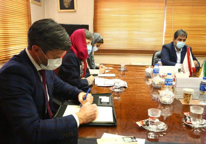 اعلام اولویت همکاری های معدنی ایران و استرالیا